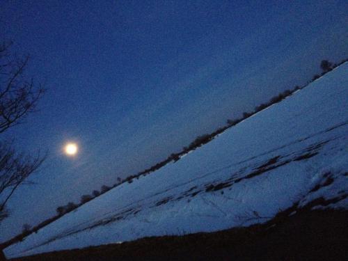 Nachtspaziergang im Winter