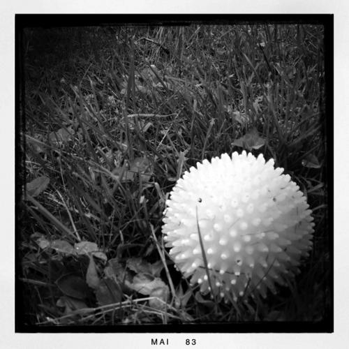 Massageball im Grass
