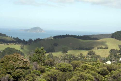 Neuseeland-Blick-Berge-Meer-Wiesen