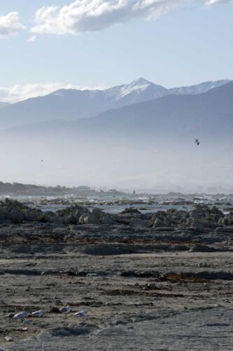 Neuseeland-Meer-Berge-FElsen-Nebel