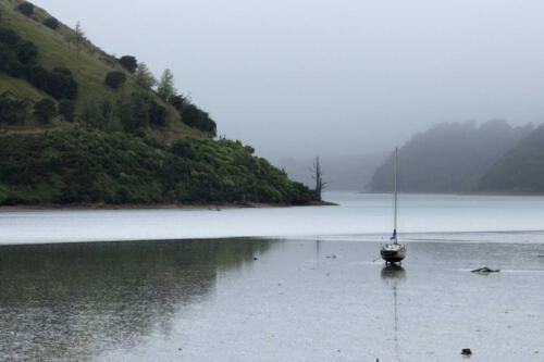 Neuseeland-Meer-Ebbe-Segelboot-Berge
