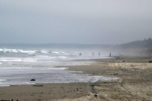 Neuseeland-Meer-Strand-Surfer-Wellen