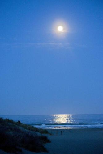 Neuseeland-Nacht-Meer-Vollmond