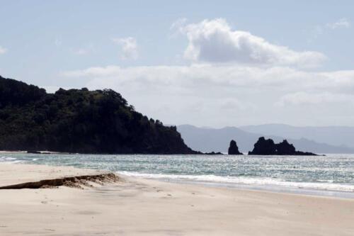 Neuseeland-Strand-Felsen