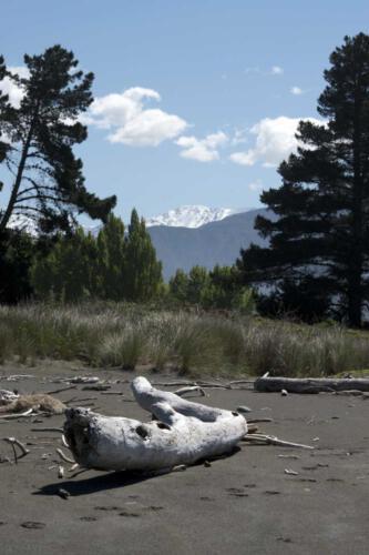 Neuseeland-Strand-Holz-Berge