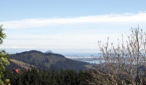 Neuseeland-Tauranga-Blick-Berge