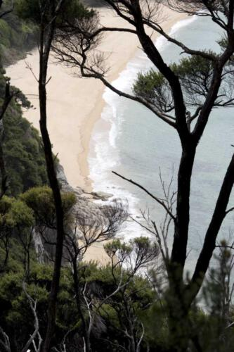 Neuseeland-Wanderung-Berg-Strand-Blick