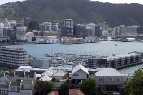 Neuseeland-Wellington-Blick-Haus-Hafen