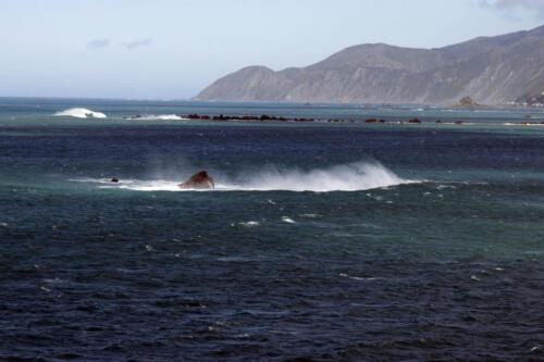 Wind-Meer-Neuseeland